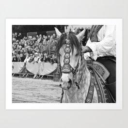 Fête médiévale, cheval Art Print