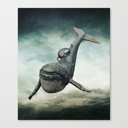 Scrounger Canvas Print