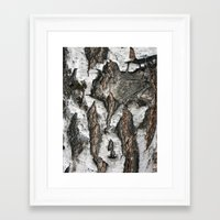 birch Framed Art Prints featuring Birch by Sproot