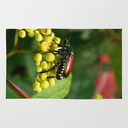 Japanese Beetle on grapevine Rug