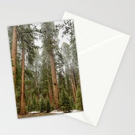Sequoias in the Fog Stationery Cards
