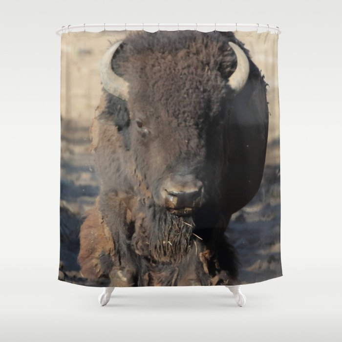 Bison Of The West Shower Curtain