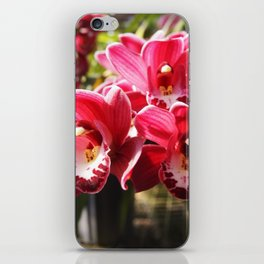 Orchid Drop Ship iPhone Skin