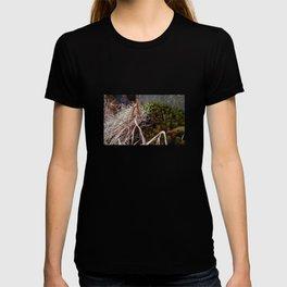 Dry Grass, Moss, and Rock T-shirt