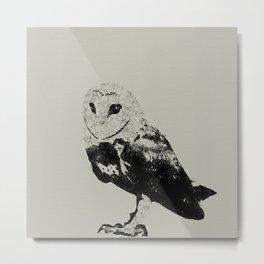 Cute Owl Metal Print