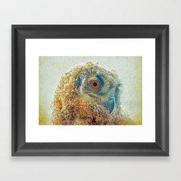 PROF-OWL Framed Art Print
