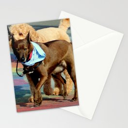 No Ifs, Ands, Or Butts! Stationery Cards
