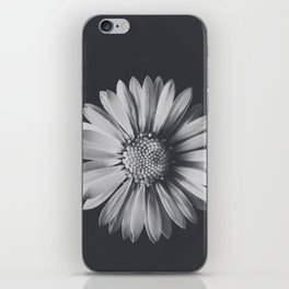 Daisy in the darkness iPhone Skin