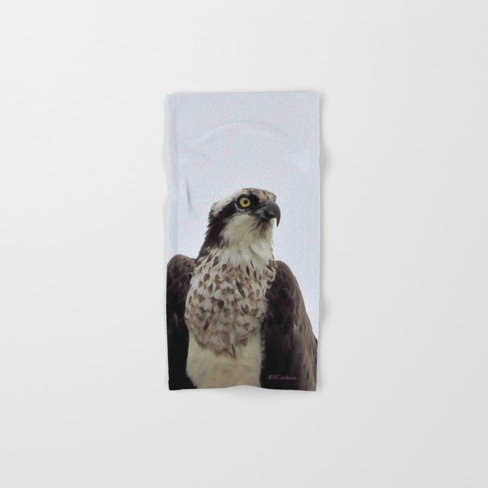 Osprey Hand & Bath Towel