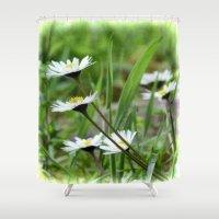 daisies Shower Curtains featuring Daisies by Lynn Bolt