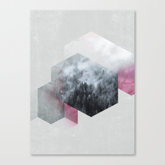 Exagonal Winter Canvas Print