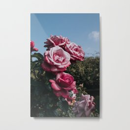 Flower Photography by Nathan Dumlao Metal Print