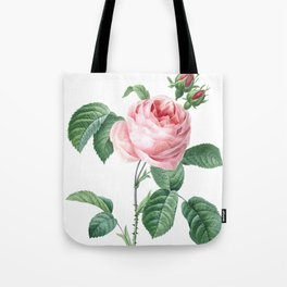 Nature, botanical print, flower poster art of Provence rose Tote Bag