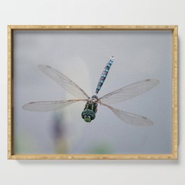 Dragonfly Smiles Serving Tray