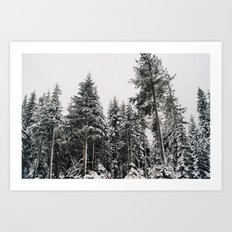 Snowy Paradise Art Print