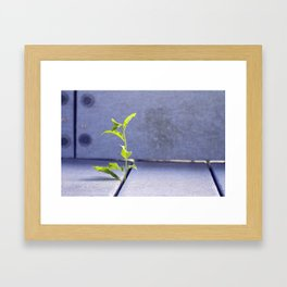 Nature Overcomes Framed Art Print