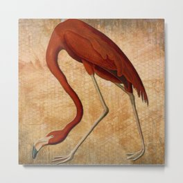 Vintage Flamingo on Brown and orange background Metal Print
