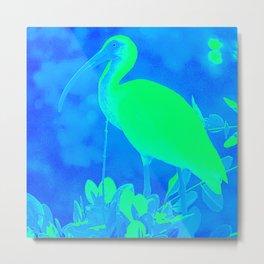 Blue White Ibis Metal Print