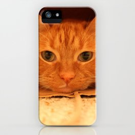 Cat in a Bag iPhone Case