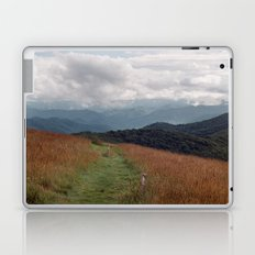 Max Patch Laptop & iPad Skin