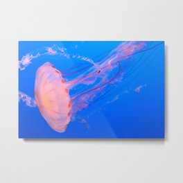 I Shall Call Him Squishy 2 Metal Print