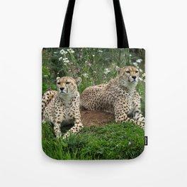 Resting Cheetahs Tote Bag
