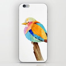 Lilac Breasted Roller iPhone Skin
