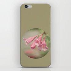 Pink Bells iPhone & iPod Skin