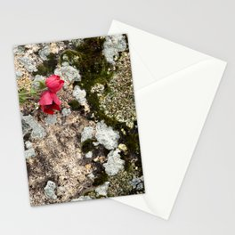 """Travel & nature photograph """"pattern of moss on rocks in green, grey and yellow, with red popply flower"""" from Pamukkale, Turkey, fine art photo print.  Stationery Cards"""
