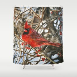 Winter Cardinal by Teresa Thompson Shower Curtain