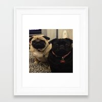 pugs Framed Art Prints featuring Pugs by JordynC