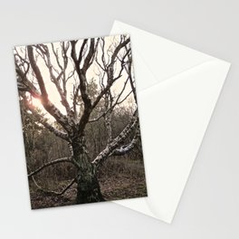 Naked Tree Stationery Cards