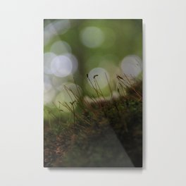 Abstract Nature I Metal Print