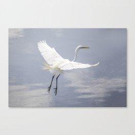 Egret Ballet 02 Canvas Print