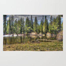 Reflecting Pond at Carson Spur, Amador County CA Rug