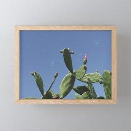 02_Cactus#retro#film#effect Framed Mini Art Print