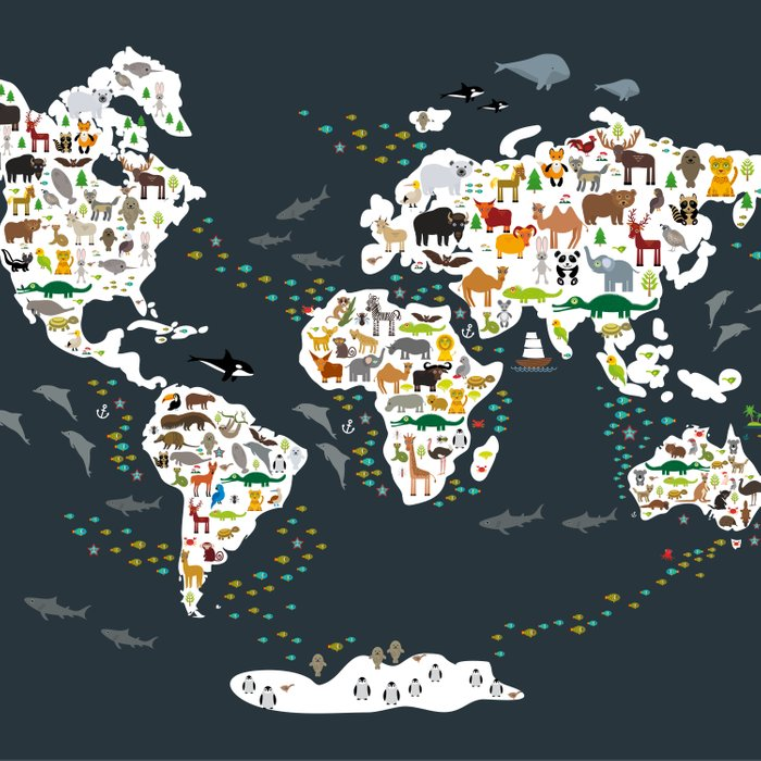 Cartoon animal world map for kids, back to schhool. Animals from all over the world Comforters