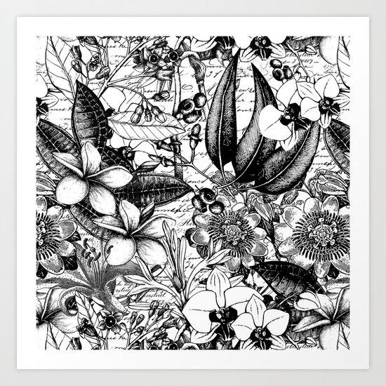 Black and white tropical flower Art Print
