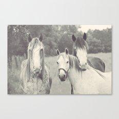The three muskateers Canvas Print