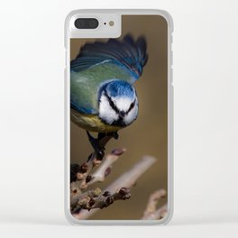 Blue tit about to fly off Clear iPhone Case