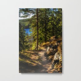 Autumn colors on forest over lake in high mountains Metal Print