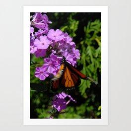 Fluttering By Art Print