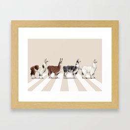 Llama The Abbey Road #2 Framed Art Print
