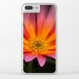 Colors In Bloom 032 Clear iPhone Case