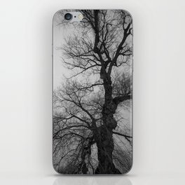 Nature Photography Weeping Willow | Lungs of the Earth | Black and White iPhone Skin