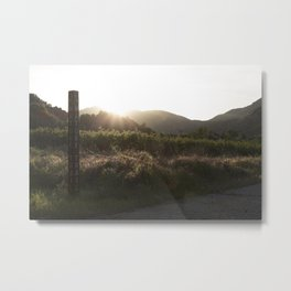 Summer time Sunset Metal Print