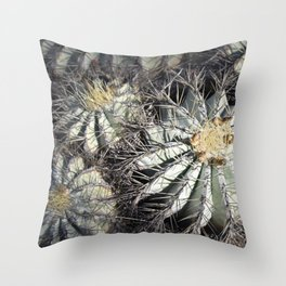 You Are Looking Sharp Throw Pillow