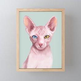 Odd Eyes Sphynx in Green Framed Mini Art Print