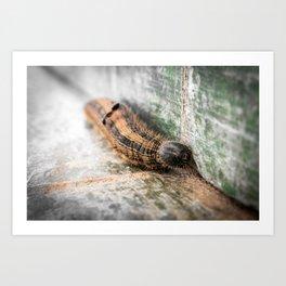 Caterpillar (a.k.a Lagartona das Trevas) Art Print