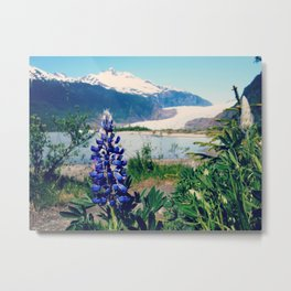 Bold Flower | Nature Photograph Metal Print